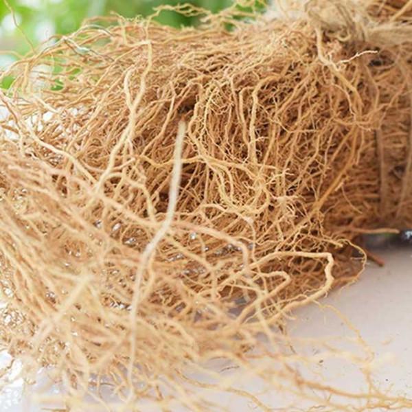 Vetiver Grass benefits